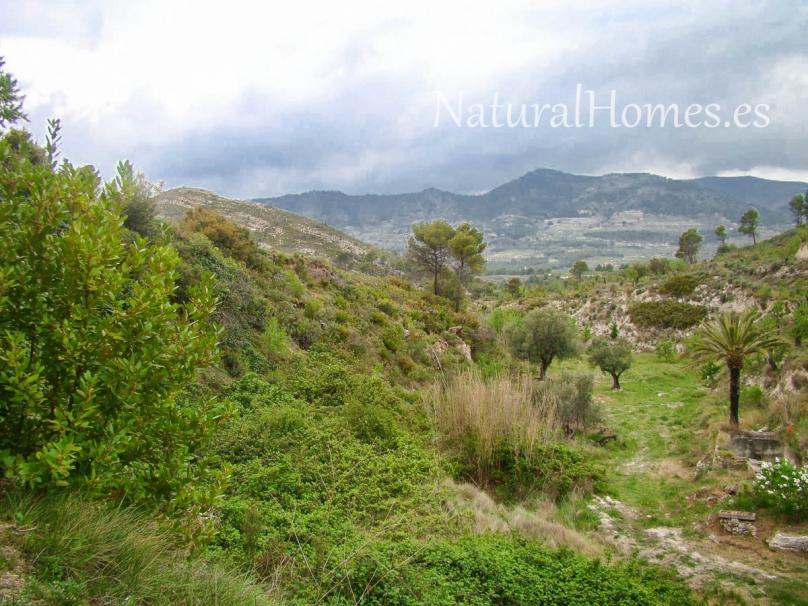 Stunning stone finca in the heart of nature.