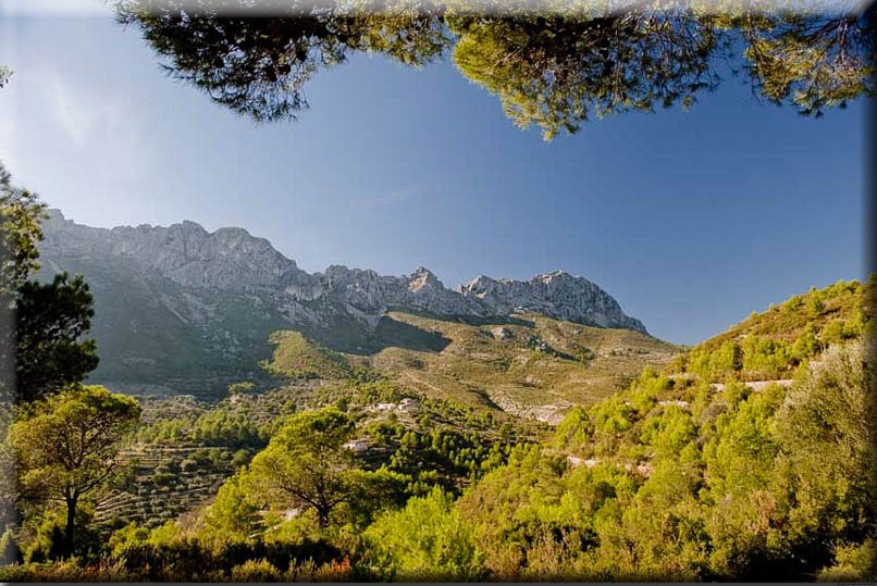 NaturalHomes.es Finca For Sale Ruins plots Bernia Jalon CostaBlanca